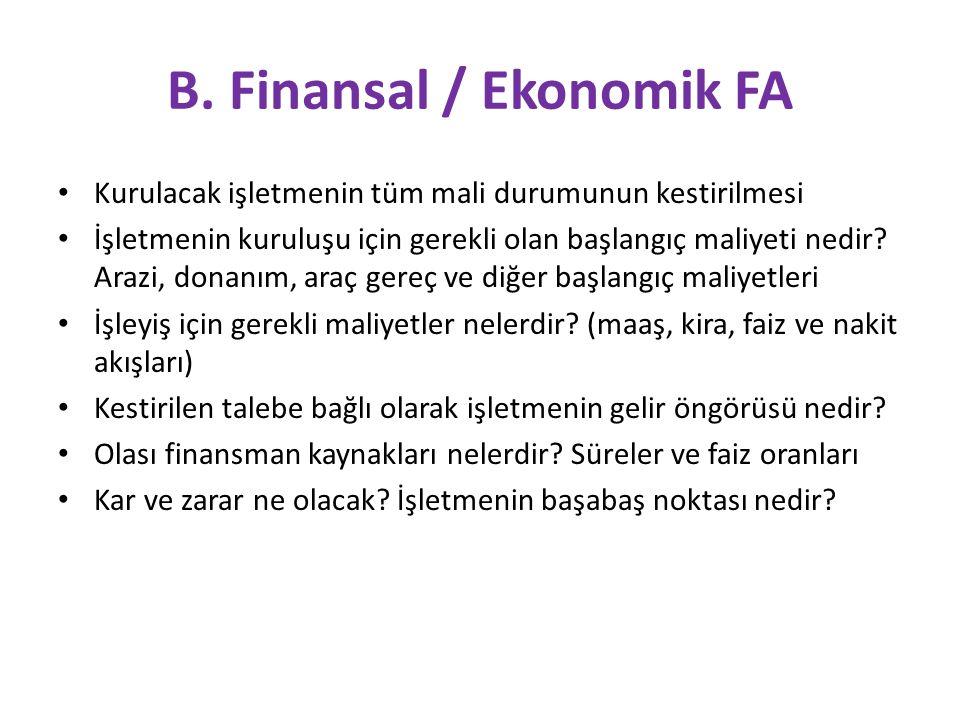B. Finansal / Ekonomik FA