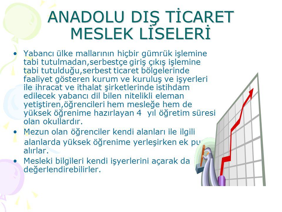ANADOLU DIŞ TİCARET MESLEK LİSELERİ