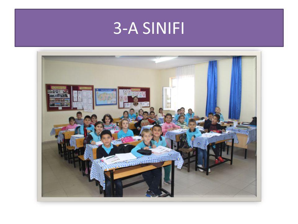3-A SINIFI