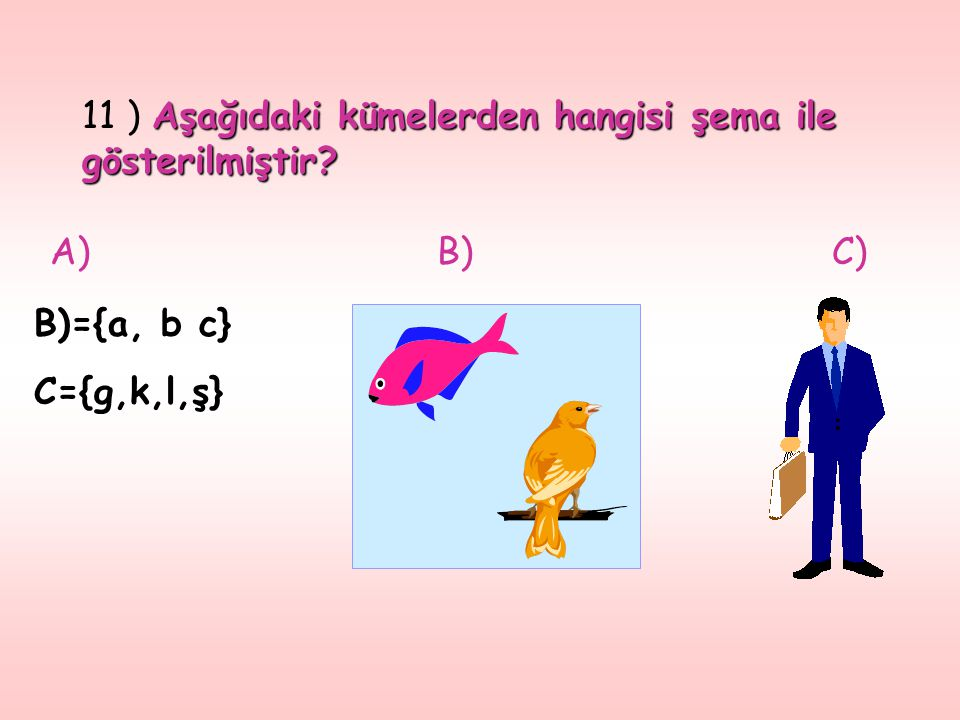 11 ) Aşağıdaki kümelerden hangisi şema ile gösterilmiştir
