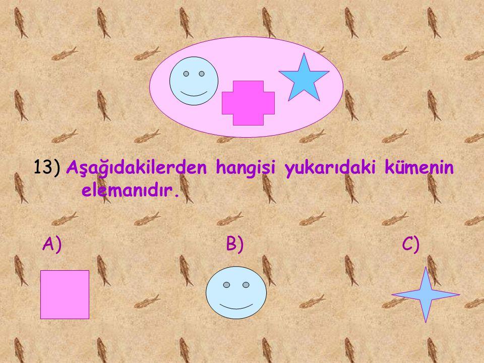 13) Aşağıdakilerden hangisi yukarıdaki kümenin elemanıdır.