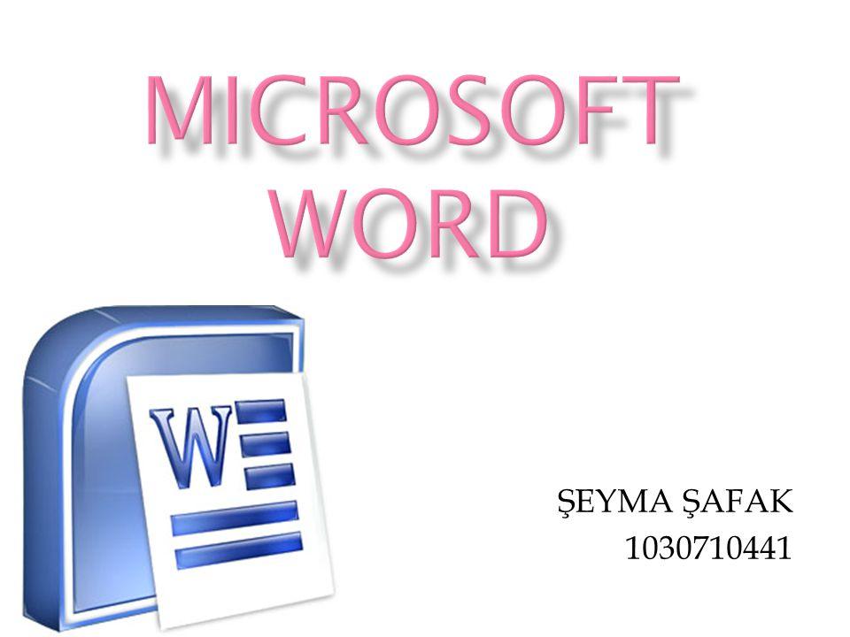 MICROSOFT WORD ŞEYMA ŞAFAK 1030710441