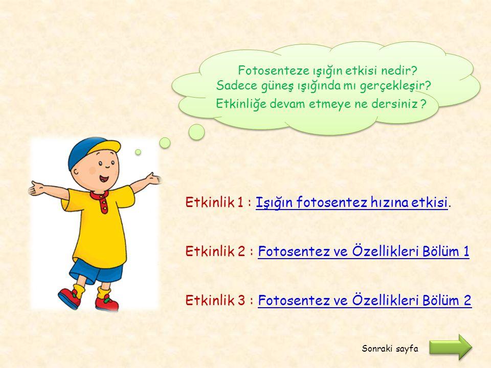 Etkinlik 1 : Işığın fotosentez hızına etkisi.