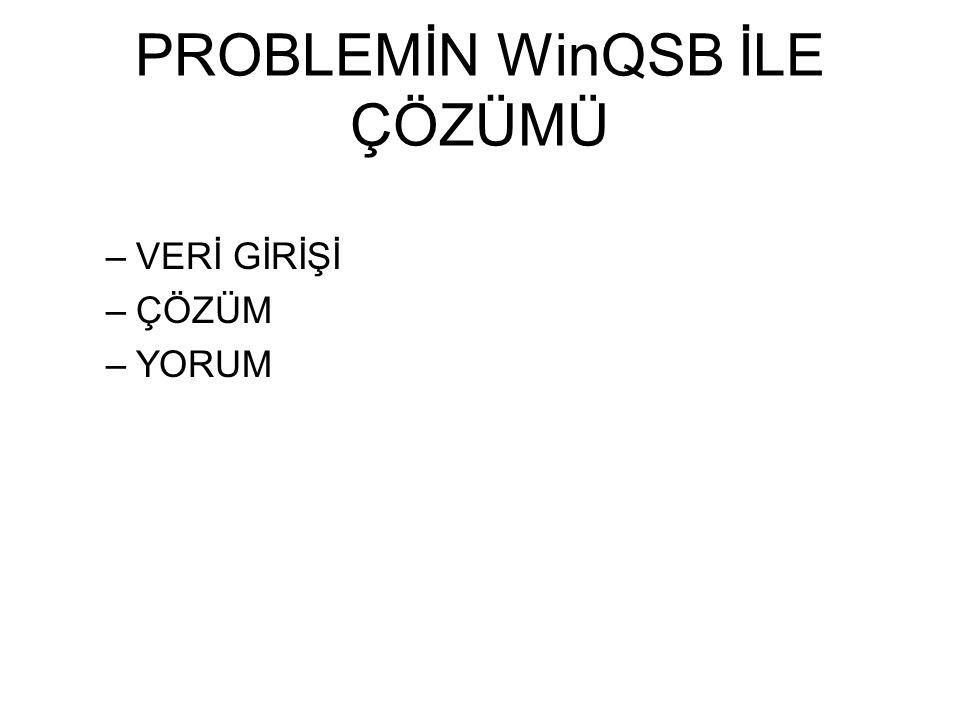 PROBLEMİN WinQSB İLE ÇÖZÜMÜ