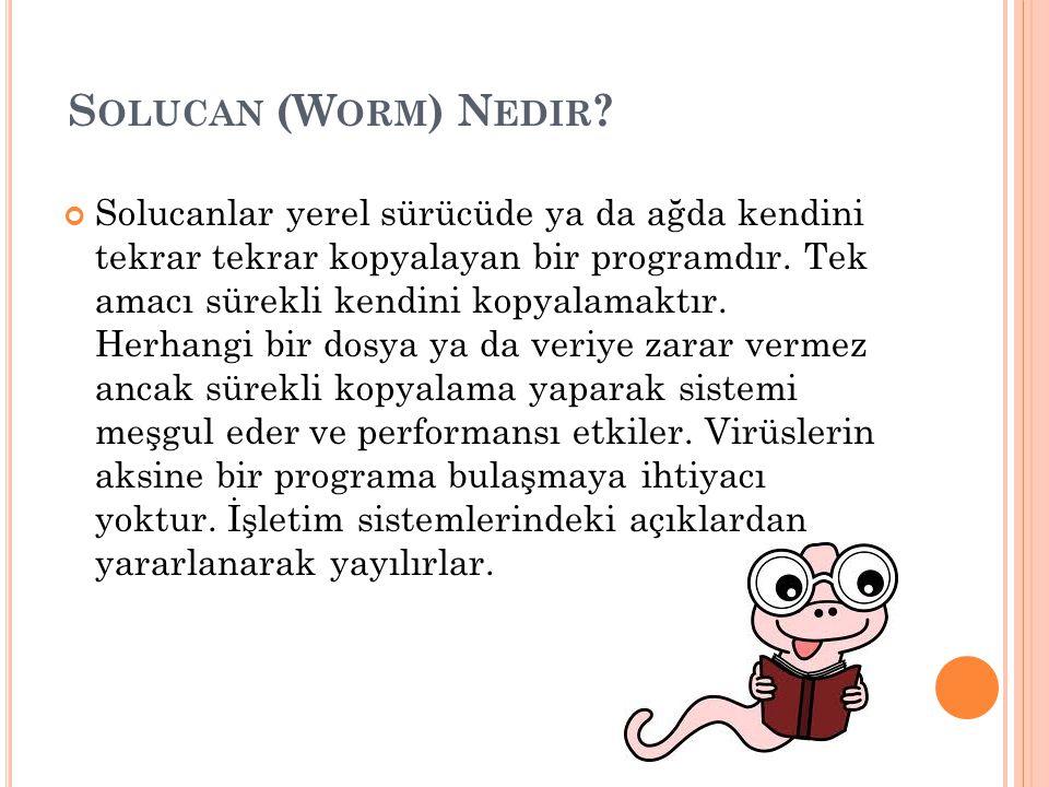 Solucan (Worm) Nedir