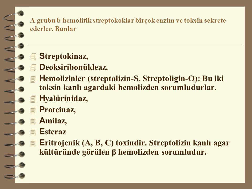 Streptokinaz, Deoksiribonükleaz,