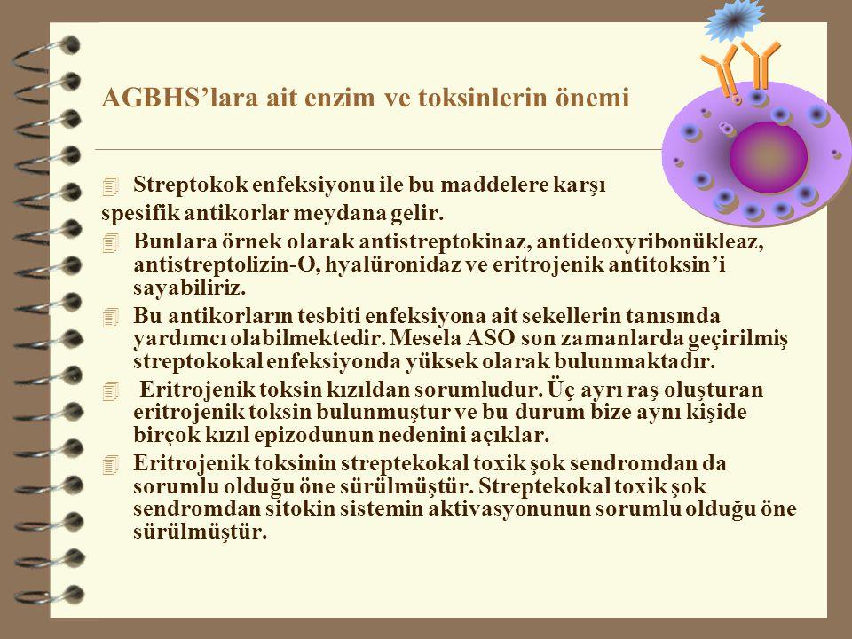 AGBHS'lara ait enzim ve toksinlerin önemi