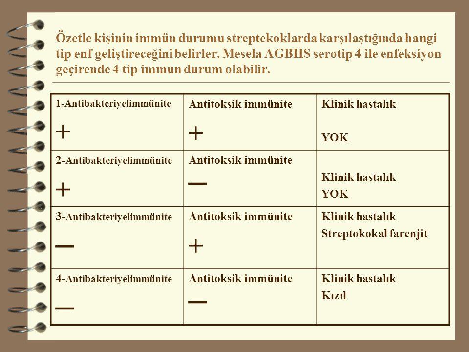 Özetle kişinin immün durumu streptekoklarda karşılaştığında hangi tip enf geliştireceğini belirler. Mesela AGBHS serotip 4 ile enfeksiyon geçirende 4 tip immun durum olabilir.