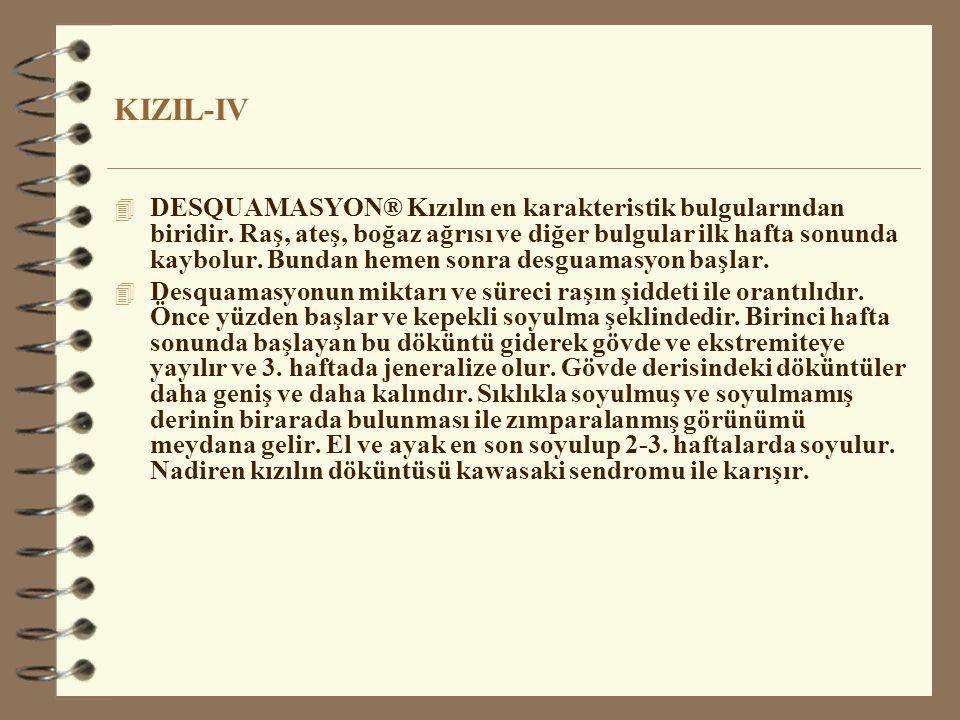 KIZIL-IV