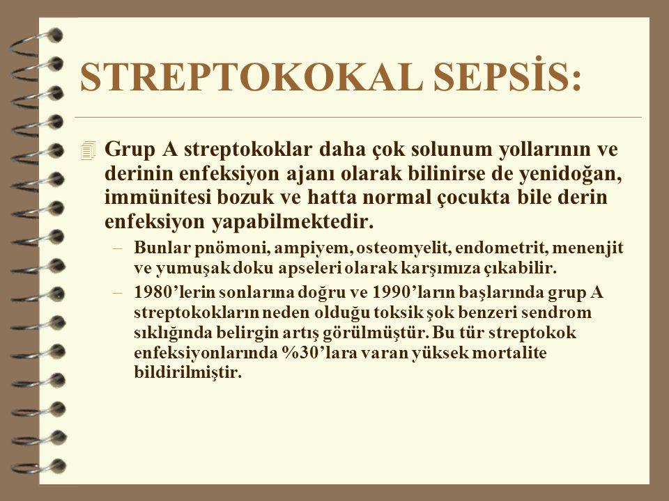 STREPTOKOKAL SEPSİS: