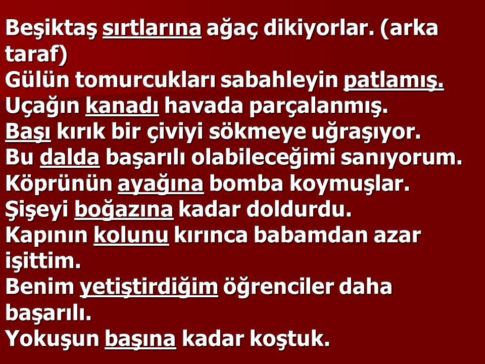 Beşiktaş sırtlarına ağaç dikiyorlar