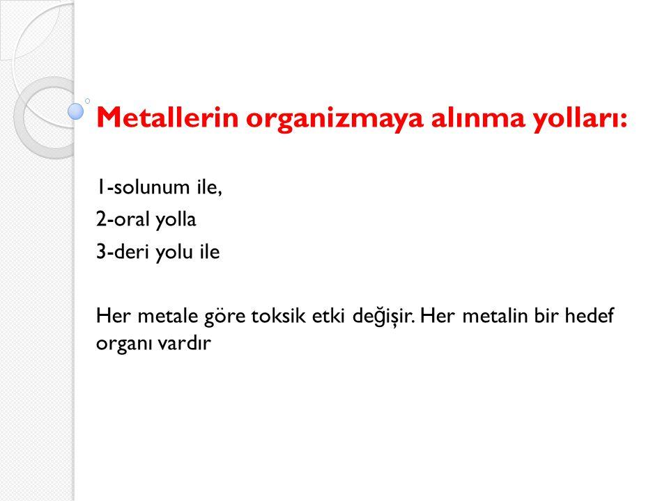 Metallerin organizmaya alınma yolları: