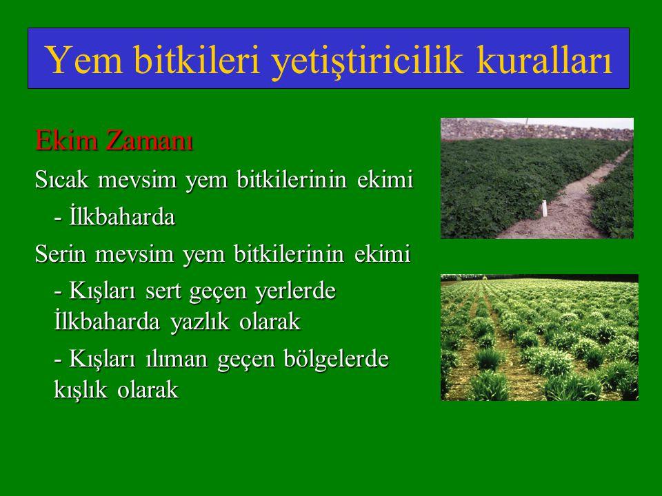 Yem bitkileri yetiştiricilik kuralları