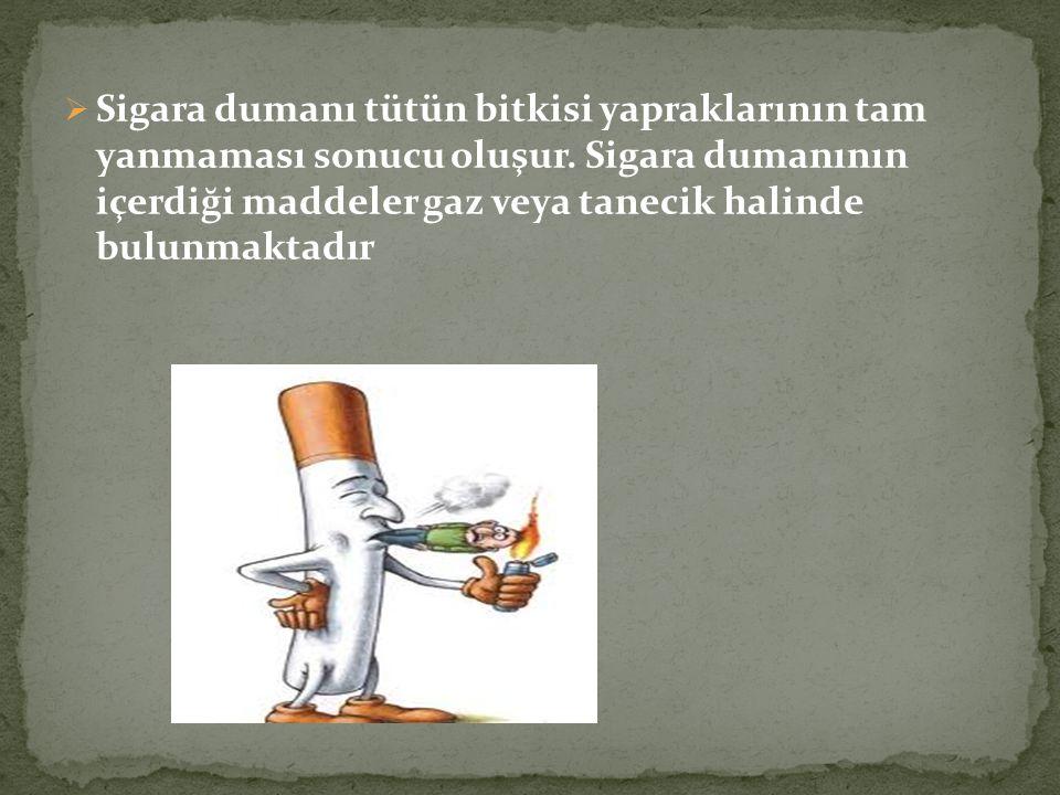 Sigara dumanı tütün bitkisi yapraklarının tam yanmaması sonucu oluşur