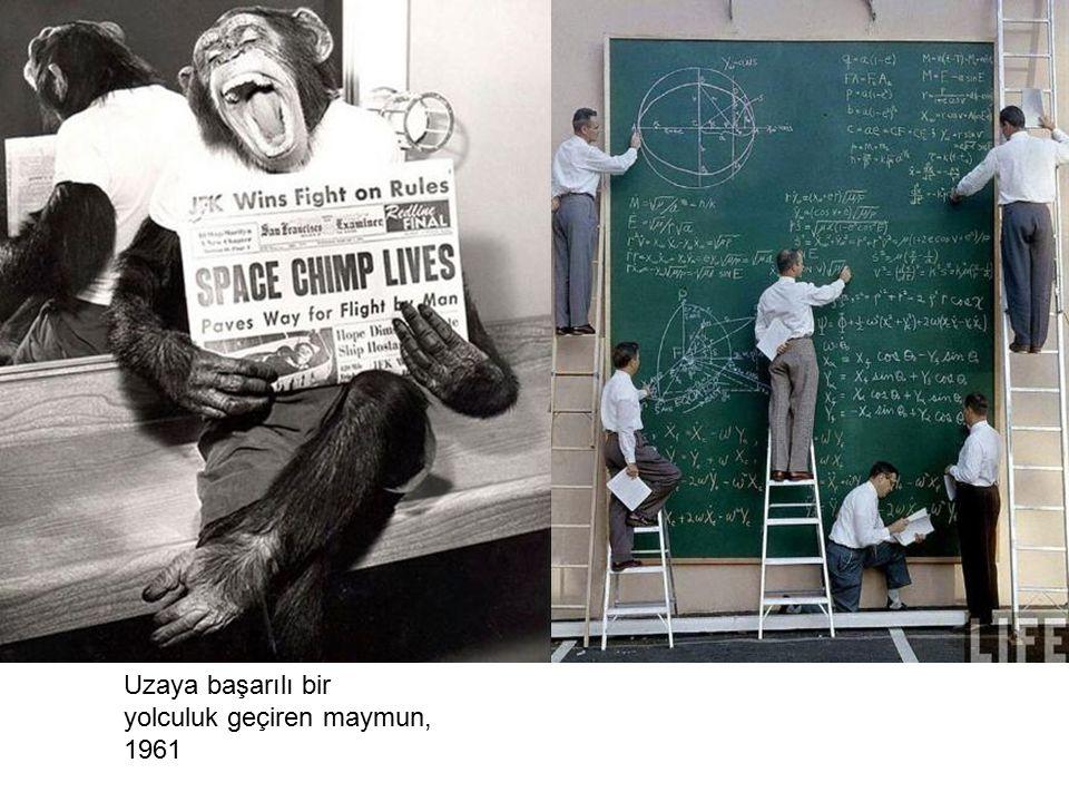 Uzaya başarılı bir yolculuk geçiren maymun, 1961