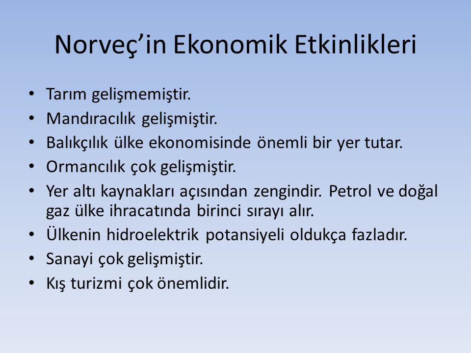 Norveç'in Ekonomik Etkinlikleri