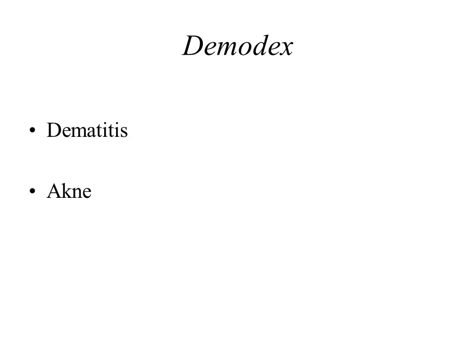 Demodex Dematitis Akne