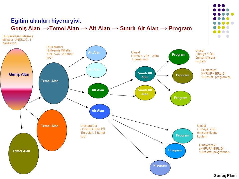 Eğitim alanları hiyerarşisi: Geniş Alan →Temel Alan → Alt Alan → Sınırlı Alt Alan → Program