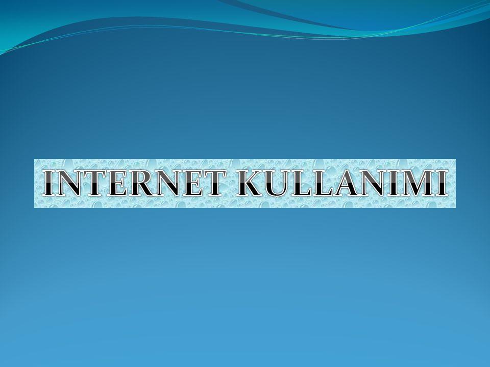 INTERNET KULLANIMI