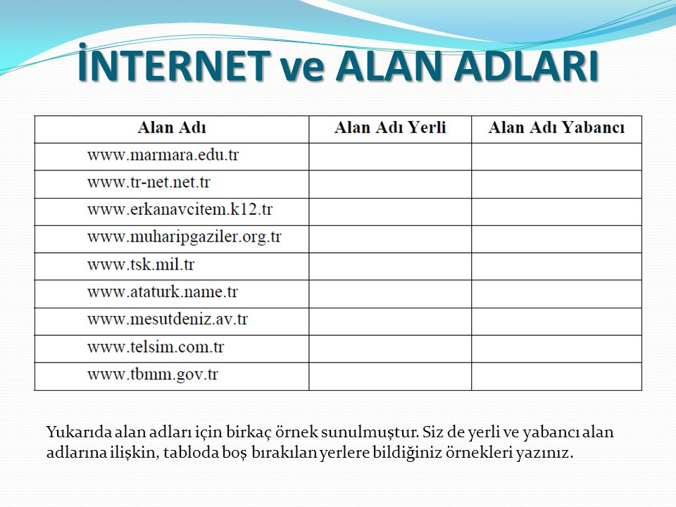 İNTERNET ve ALAN ADLARI