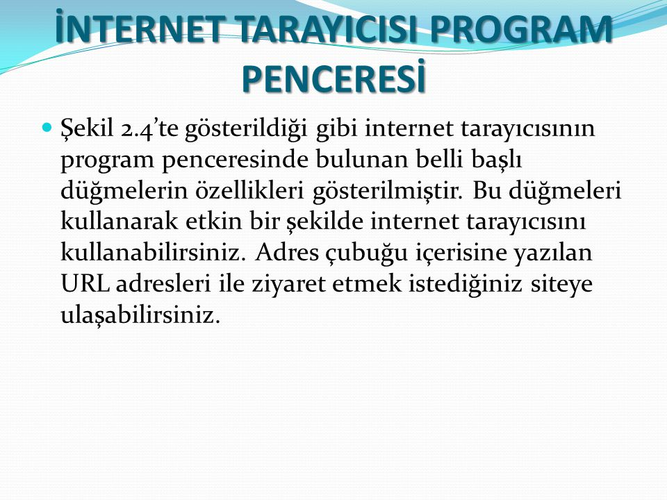 İNTERNET TARAYICISI PROGRAM PENCERESİ