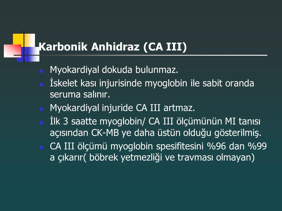 Karbonik Anhidraz (CA III)
