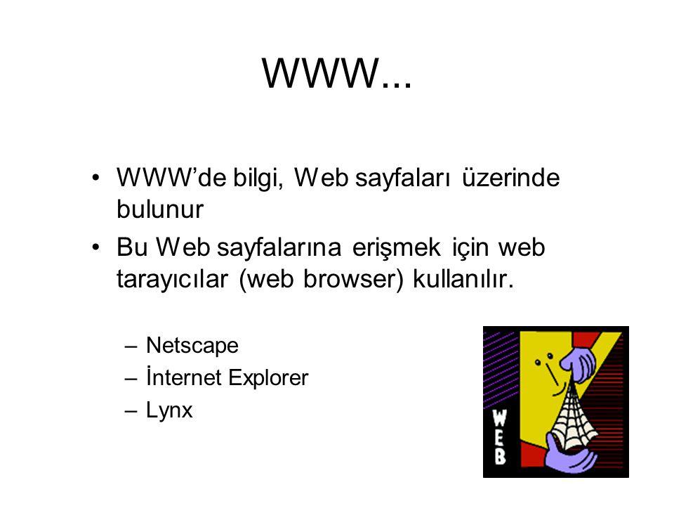 WWW... WWW'de bilgi, Web sayfaları üzerinde bulunur