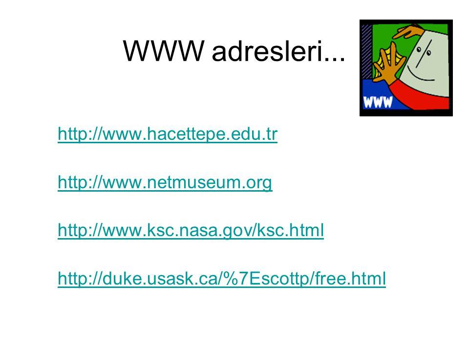 WWW adresleri... http://www.hacettepe.edu.tr http://www.netmuseum.org