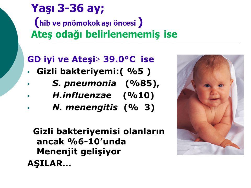 Yaşı 3-36 ay; (hib ve pnömokok aşı öncesi ) Ateş odağı belirlenememiş ise