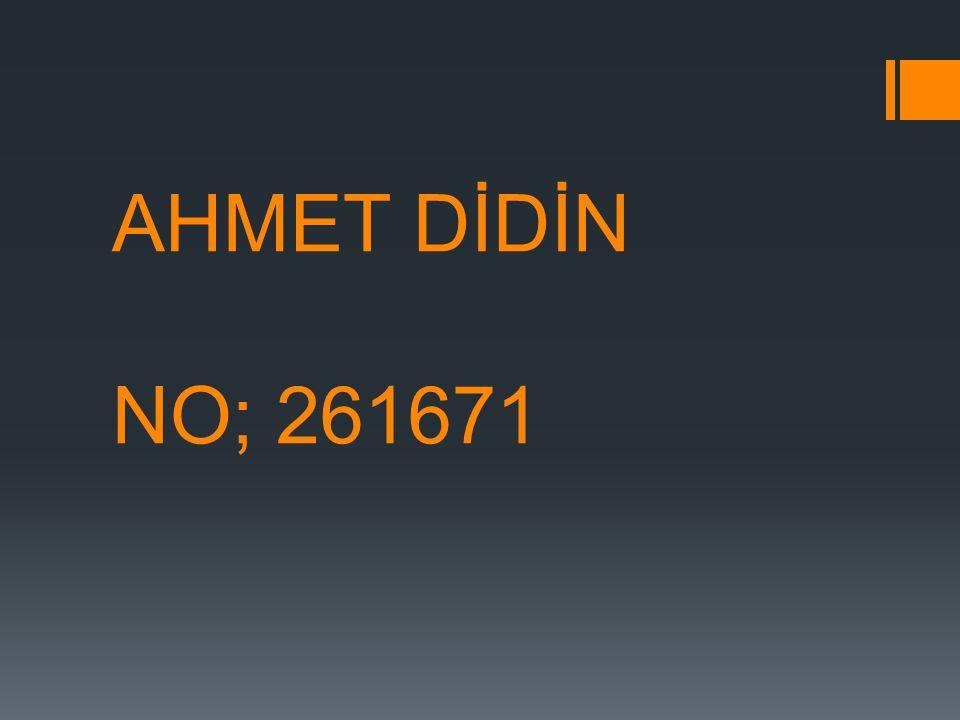 AHMET DİDİN NO; 261671
