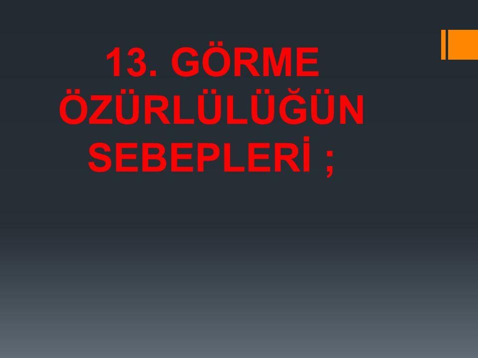 13. GÖRME ÖZÜRLÜLÜĞÜN SEBEPLERİ ;