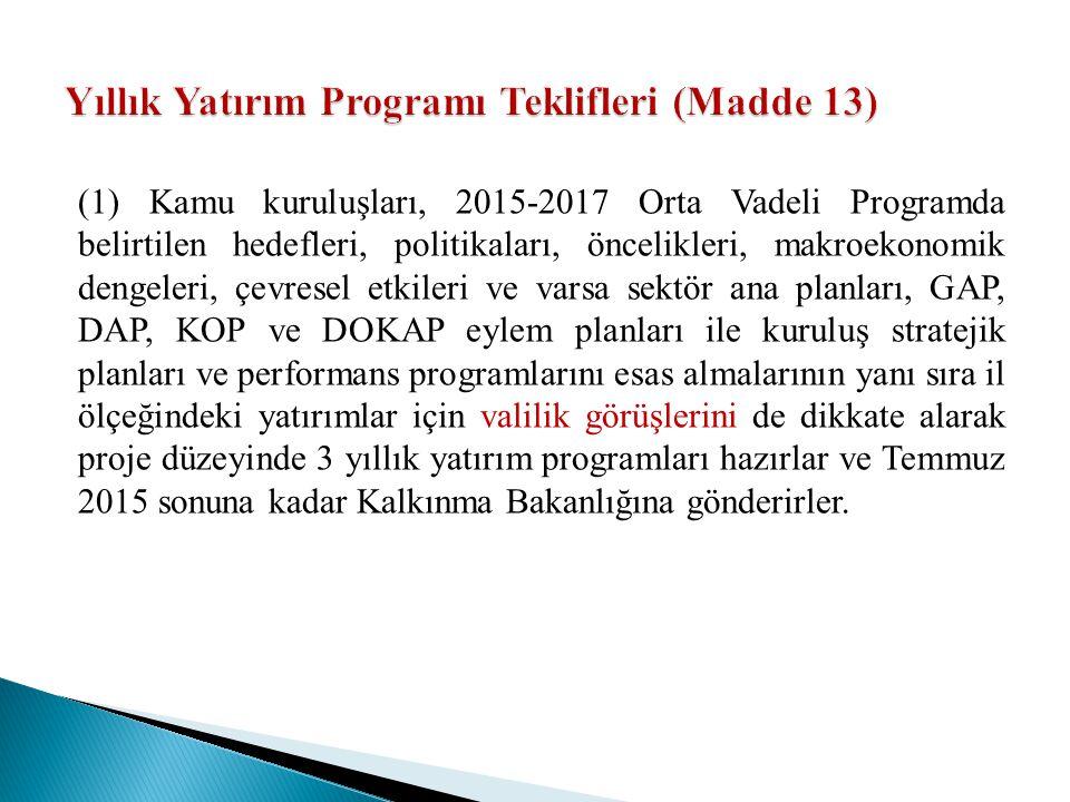 Yıllık Yatırım Programı Teklifleri (Madde 13)