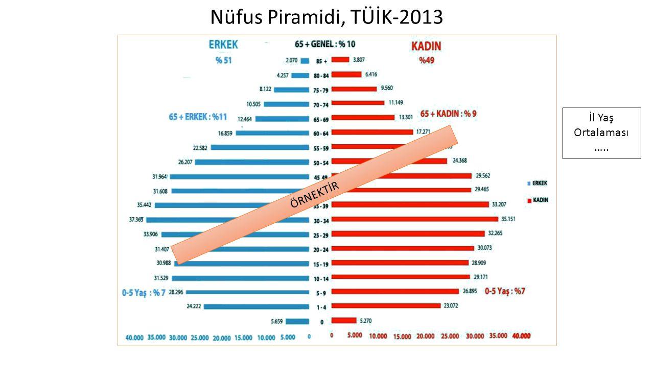 Nüfus Piramidi, TÜİK-2013 İl Yaş Ortalaması ….. ÖRNEKTİR
