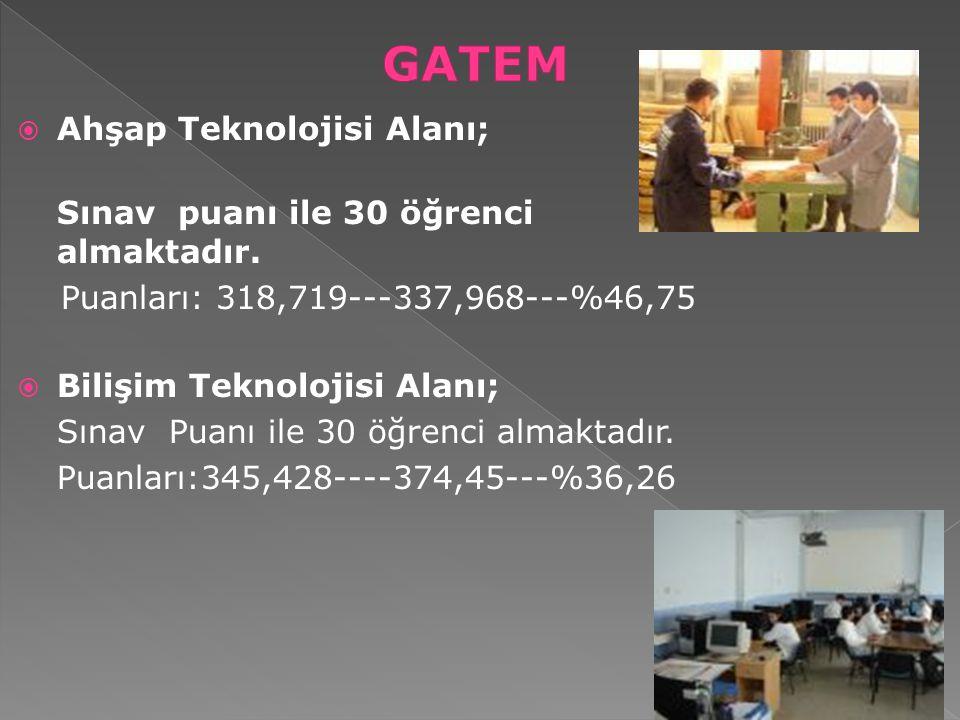 GATEM Ahşap Teknolojisi Alanı; Puanları: 318,719---337,968---%46,75