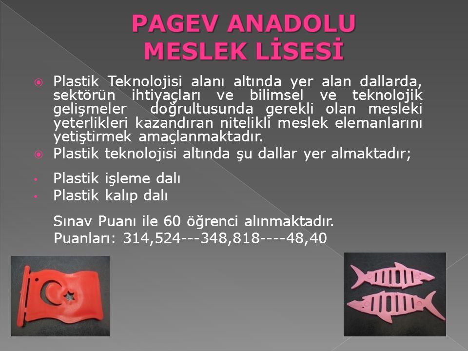 PAGEV ANADOLU MESLEK LİSESİ
