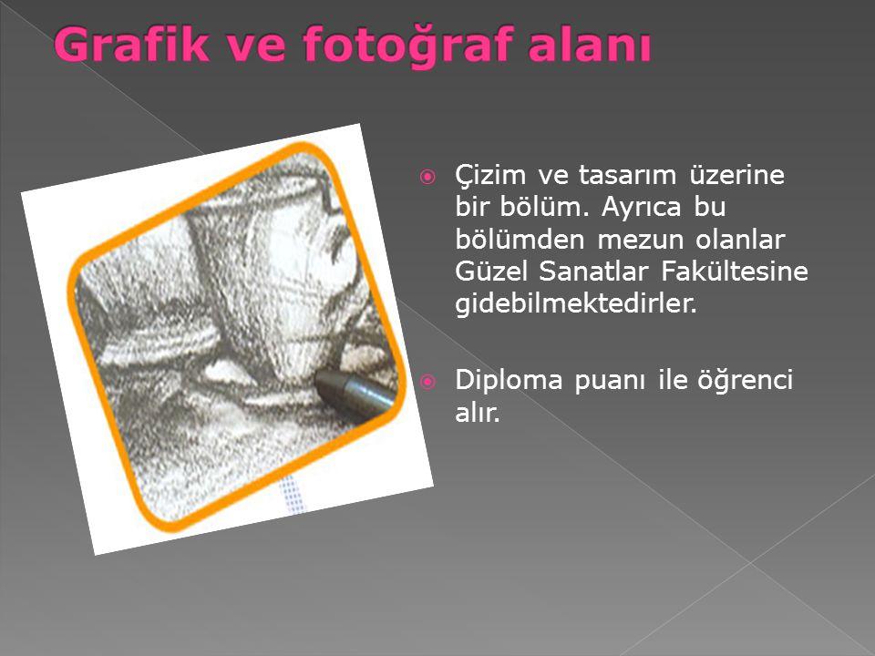 Grafik ve fotoğraf alanı
