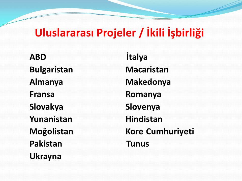 Uluslararası Projeler / İkili İşbirliği