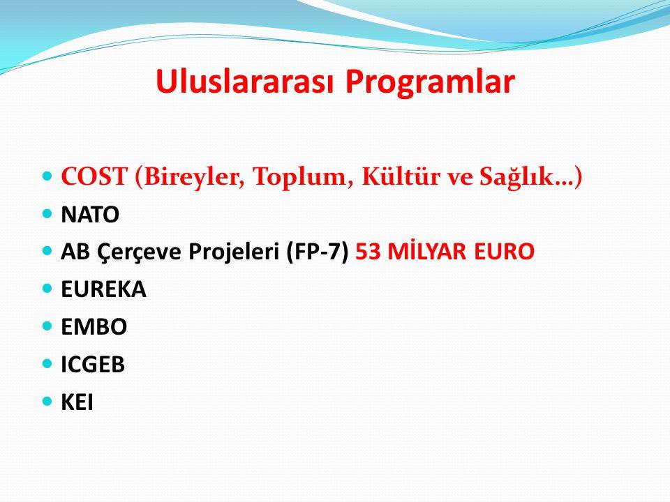 Uluslararası Programlar