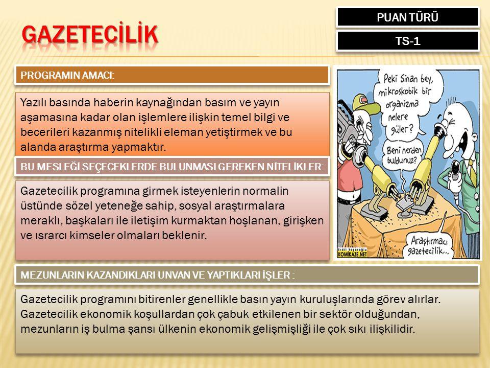 GAZETECİLİK PUAN TÜRÜ TS-1