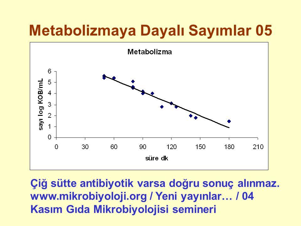Metabolizmaya Dayalı Sayımlar 05