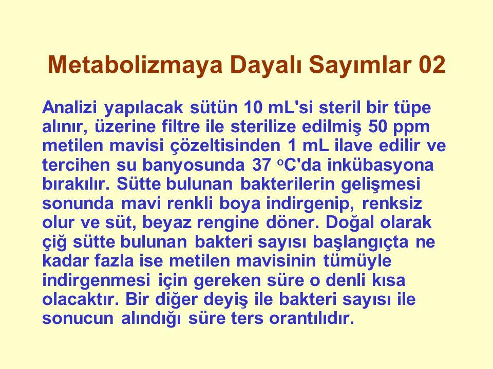 Metabolizmaya Dayalı Sayımlar 02