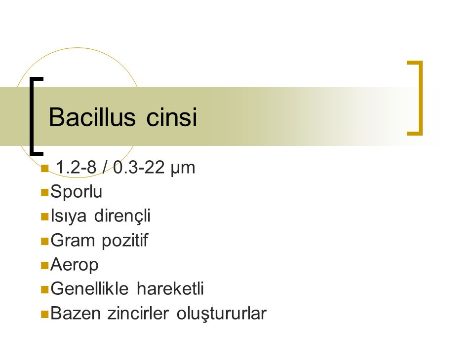 Bacillus cinsi 1.2-8 / 0.3-22 µm Sporlu Isıya dirençli Gram pozitif