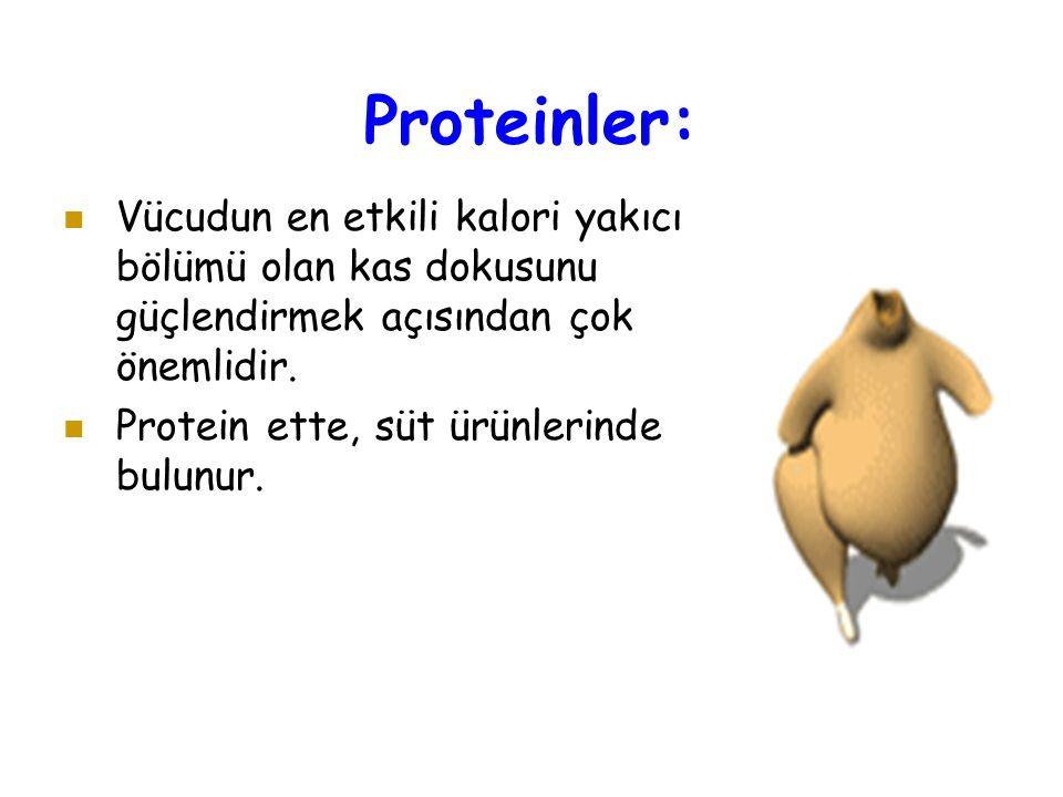 Proteinler: Vücudun en etkili kalori yakıcı bölümü olan kas dokusunu güçlendirmek açısından çok önemlidir.