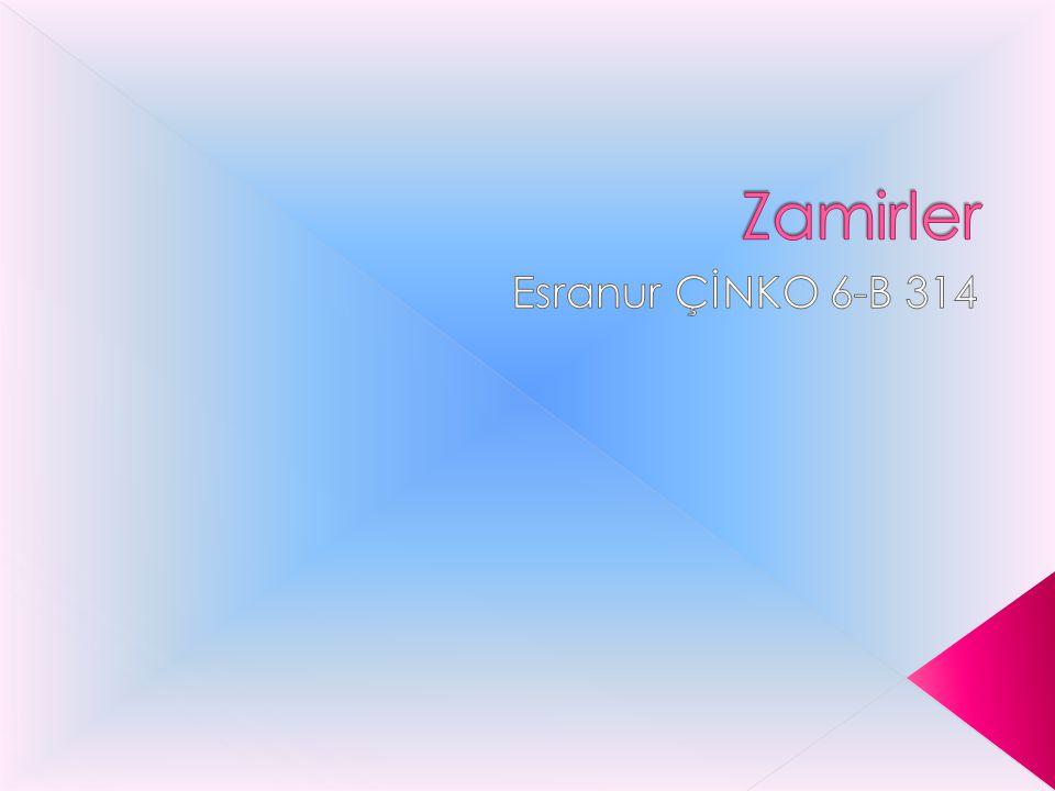 Zamirler Esranur ÇİNKO 6-B 314