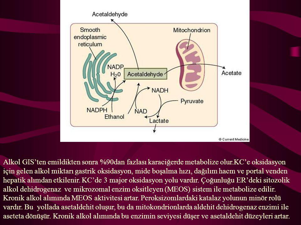 Alkol GIS'ten emildikten sonra %90dan fazlası karaciğerde metabolize olur.KC'e oksidasyon için gelen alkol miktarı gastrik oksidasyon, mide boşalma hızı, dağılım hacm ve portal venden hepatik alımdan etkilenir.