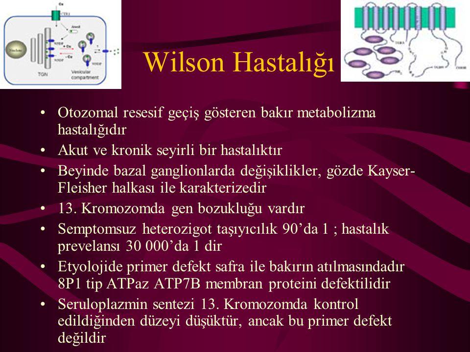 Wilson Hastalığı Otozomal resesif geçiş gösteren bakır metabolizma hastalığıdır. Akut ve kronik seyirli bir hastalıktır.