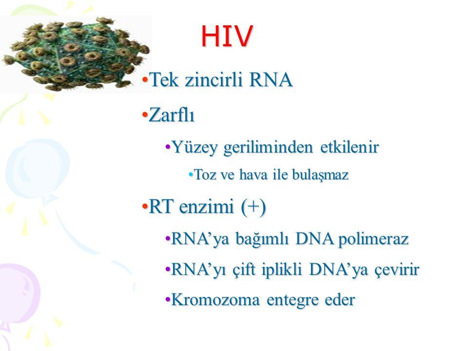 HIV Tek zincirli RNA Zarflı RT enzimi (+) Yüzey geriliminden etkilenir