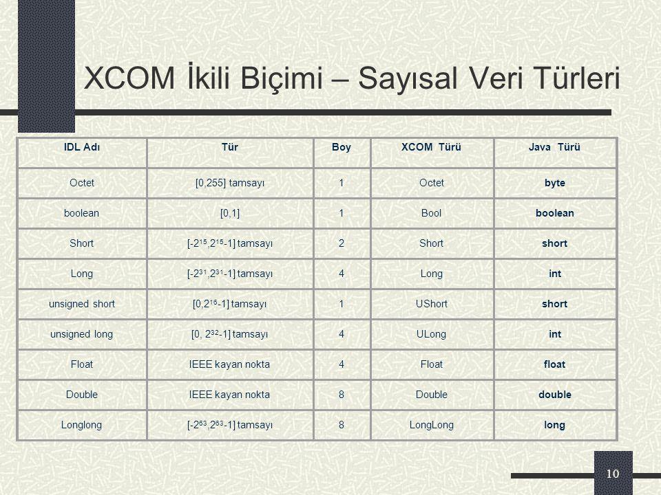 XCOM İkili Biçimi – Sayısal Veri Türleri