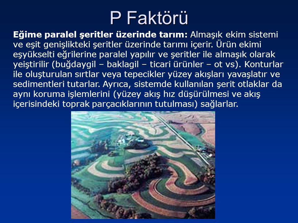 P Faktörü