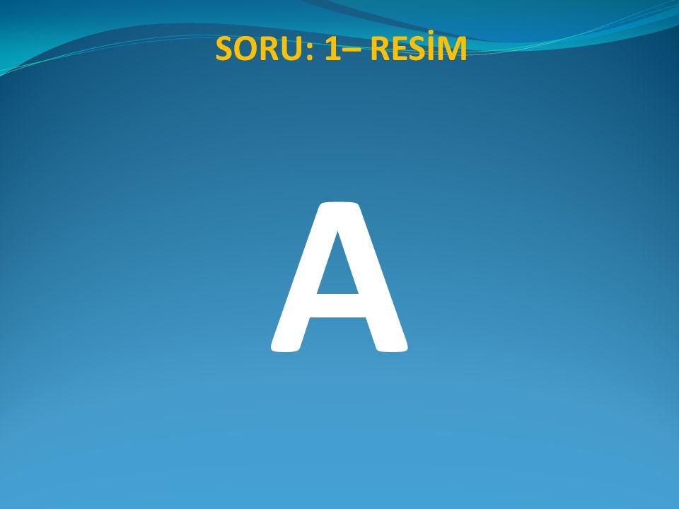 SORU: 1– RESİM A
